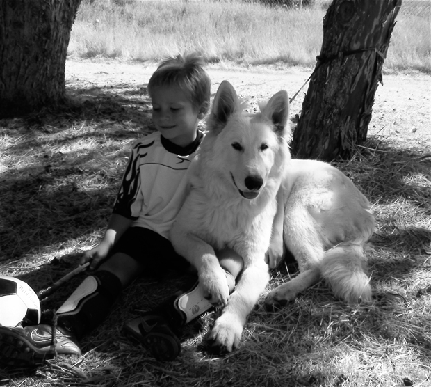 Ice Jake berger blanc suisse game